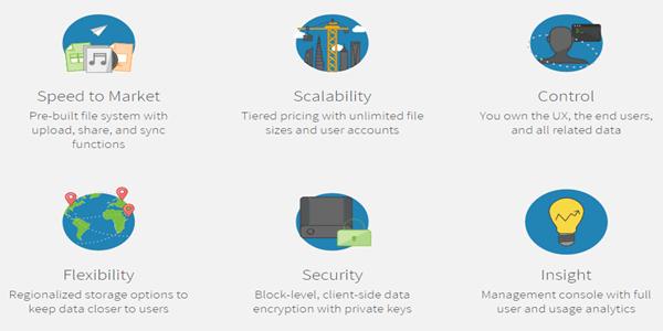 Bitcasa Cloud Storage Platform Features