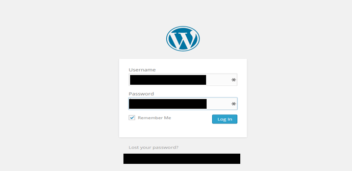 How to Protect Your WordPress Website from External Attacks