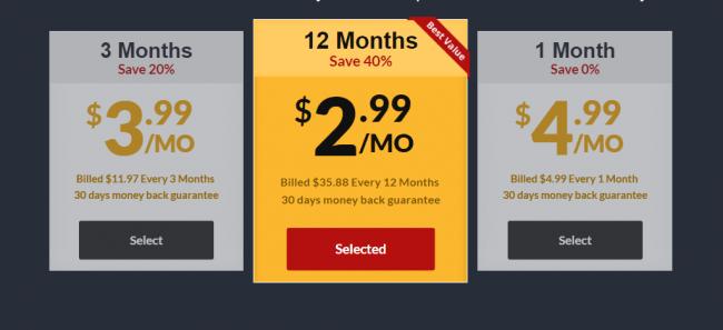 frootvpn-price