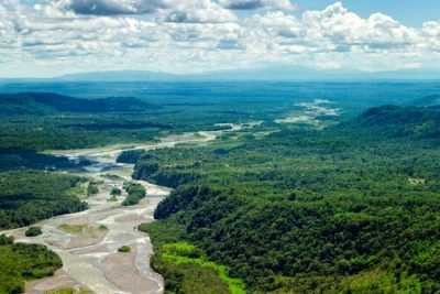 Amazon-jungle-without-internet