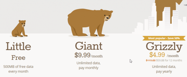 Tunnelbear-VPN-price