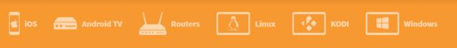 Goose_VPN_compatibility