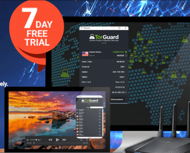 torguard  - torguard 650x522 - How To Set Up A VPN on Your Chromebook