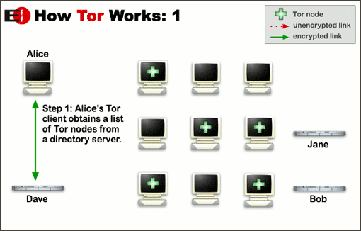 Tor Browser Process 1