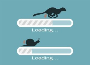 cheetah and snail metaphor for download speed