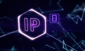 ip image 1
