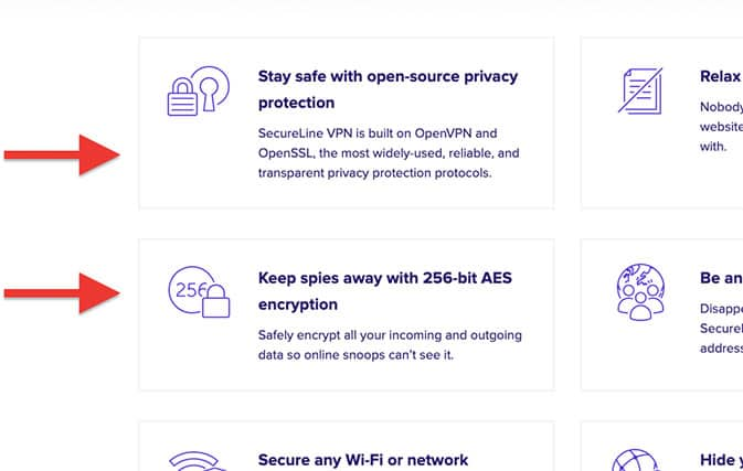 An image featuring information about the safety that Avast's SecureLine VPN offers when using their VPN