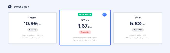 VeePN pricing plans